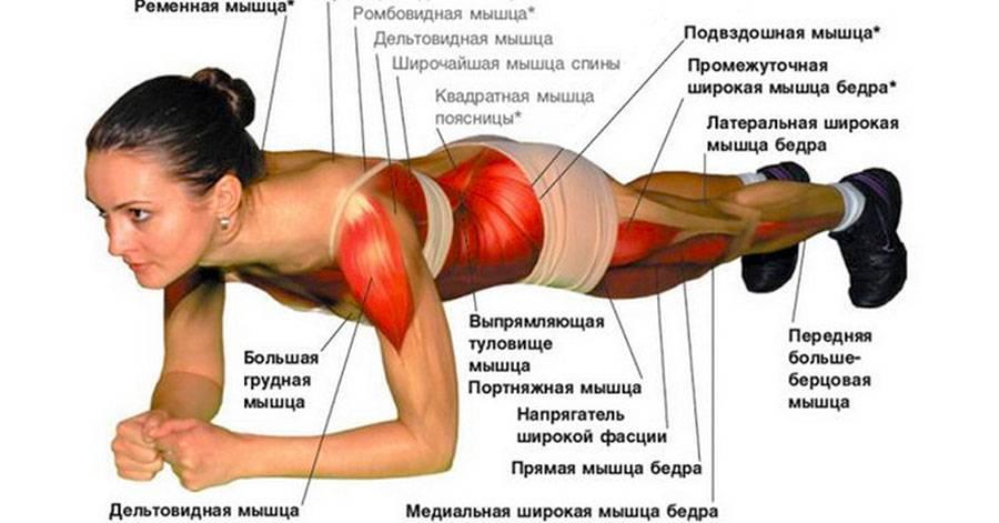 Упражнение планка: техника выполнения, преимущества, отзывы