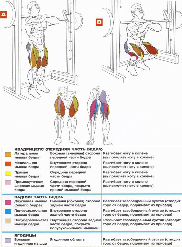 Упражнения на квадрицепс