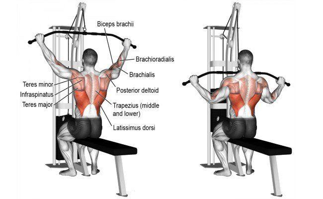 Как правильно выполнять тягу вертикального блока за голову?