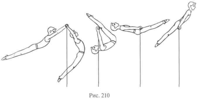 Подтягивания широким хватом: виды и техника выполнения упражнения, какие мышцы работают