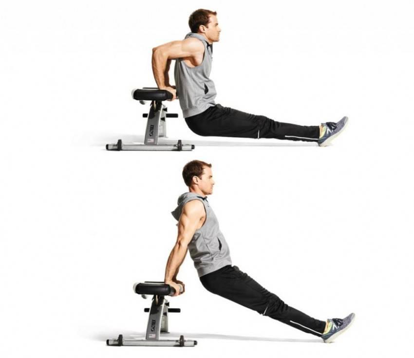 Инструкция как правильно делать отжимания от скамьи. эффективные упражнения обратных отжиманий на трицепс. (80 фото + инструкция)