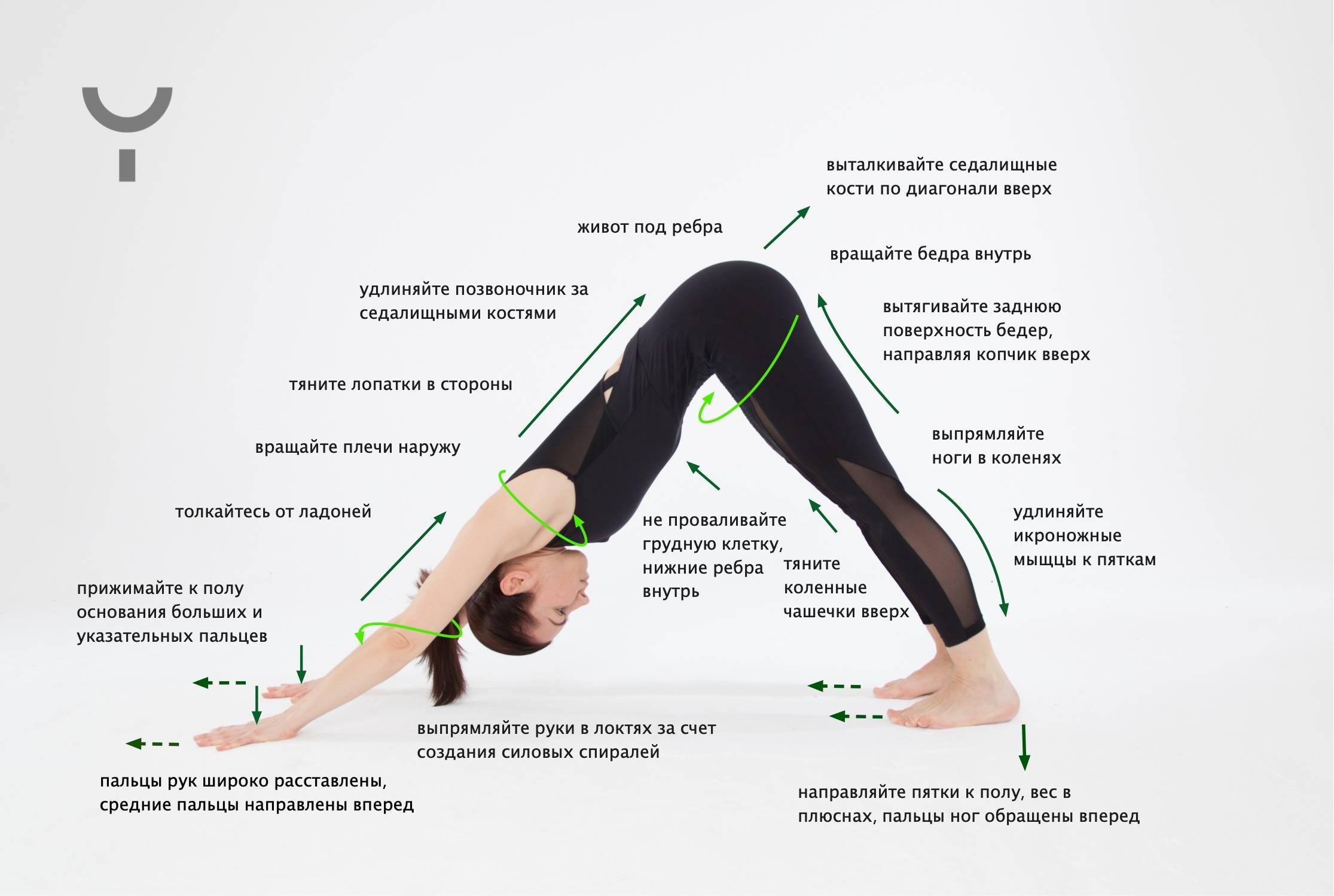 Студия йоги пёрышко