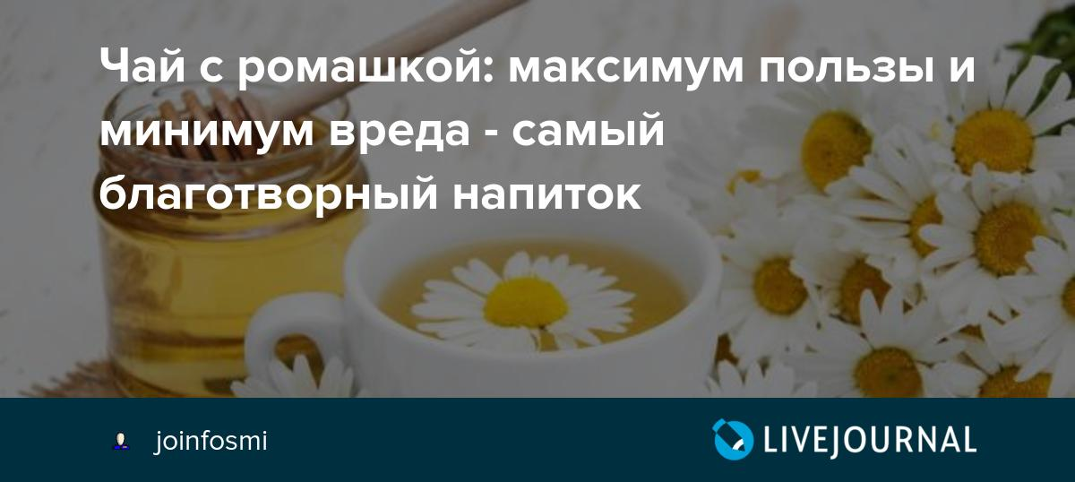 Ромашковый чай — польза и вред чая из ромашки, противопоказания, как приготовить