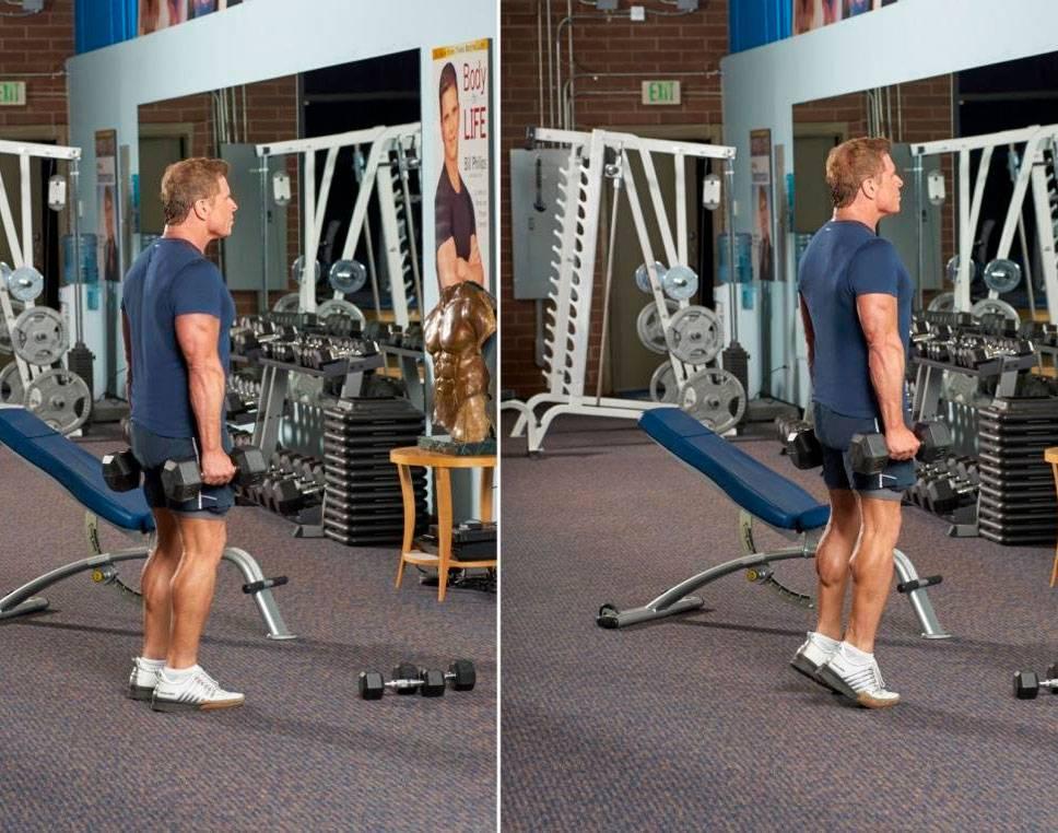 Подъем на носки сидя: техника выполнения, какие мышцы работают