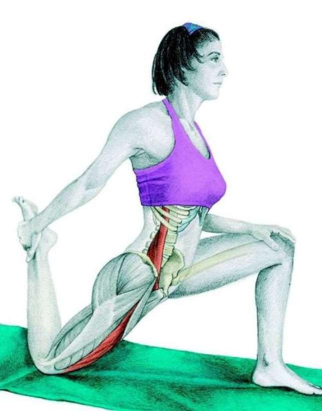 Растяжка четырехглавой мышцы. растяжка квадрицепсов. растяжка квадрицепса с использованием платформы