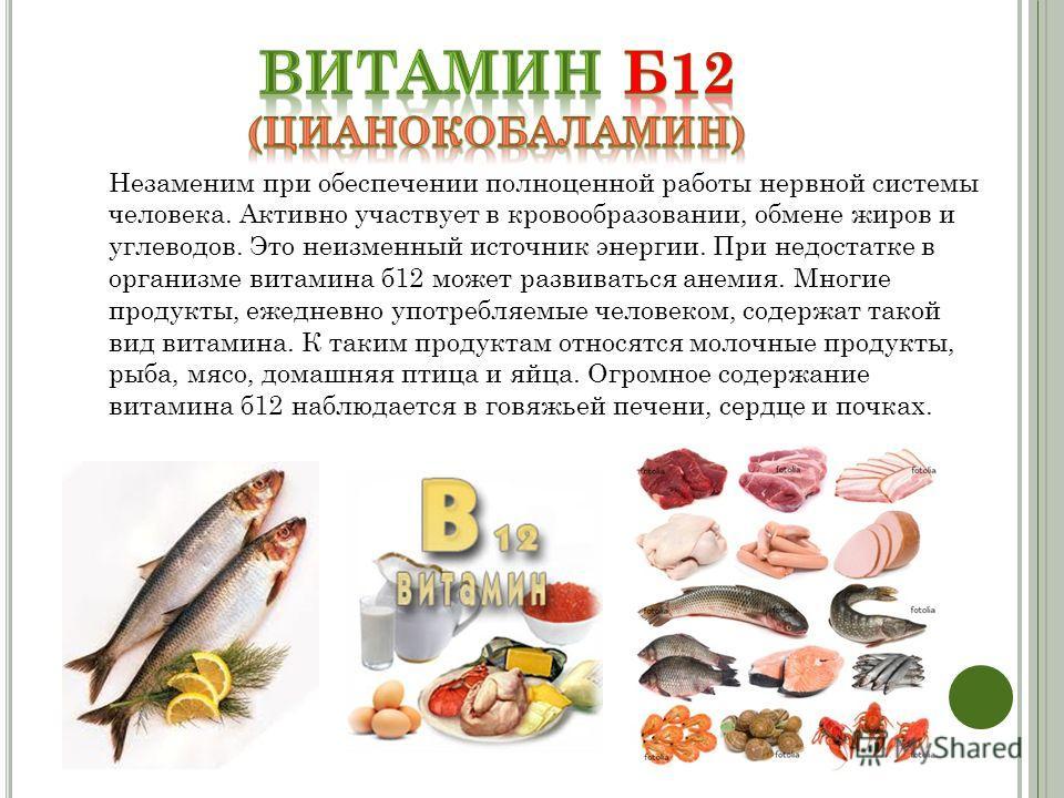 Витамин в12: в каких продуктах содержится больше всего