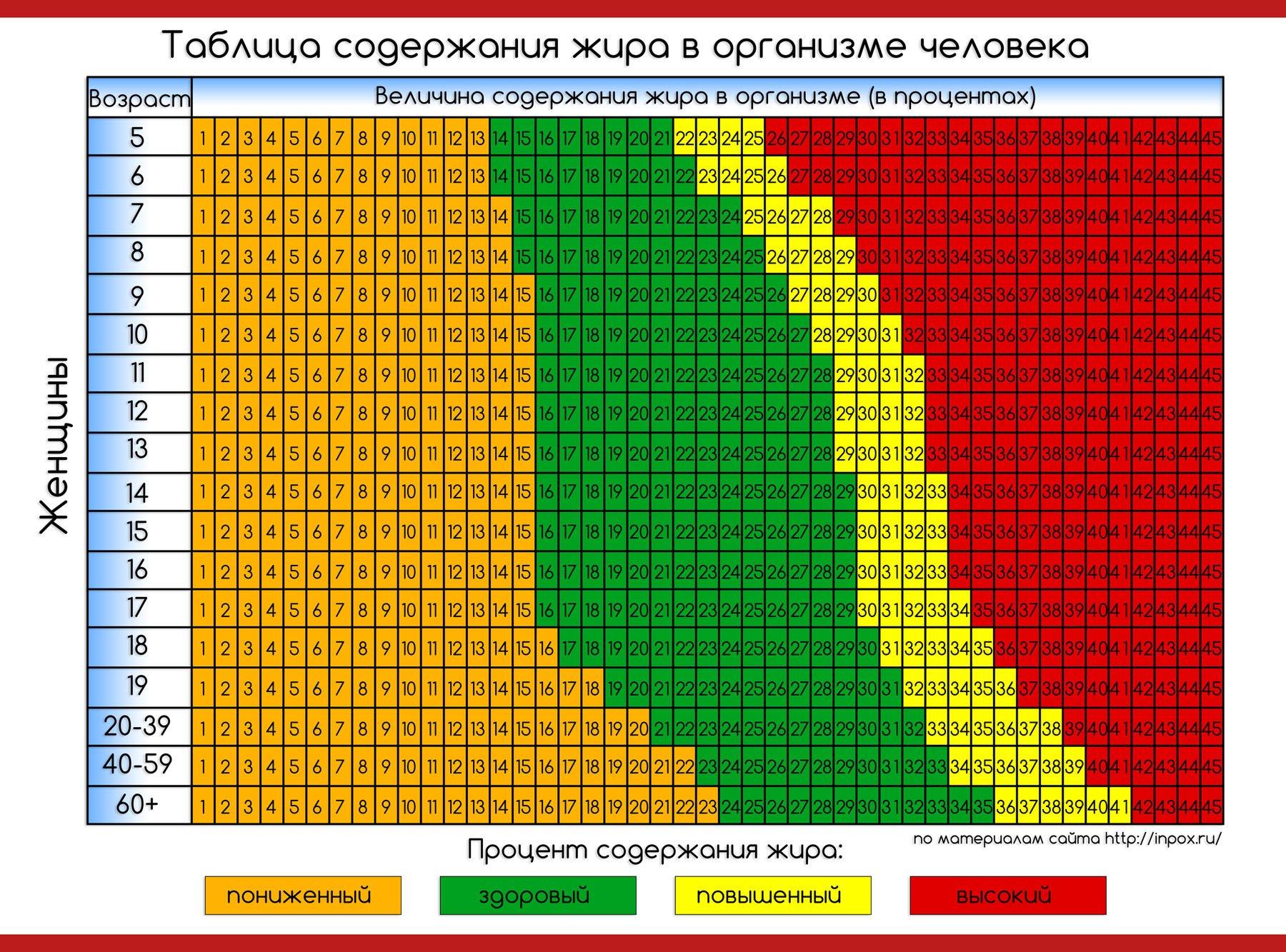 Как измерить процент жира в организме, способы