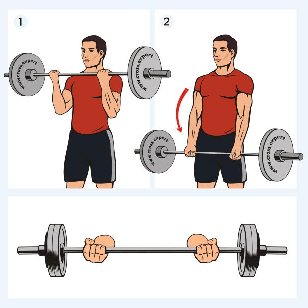 Выброс штанги: как правильно делать, польза и какие мышцы работают