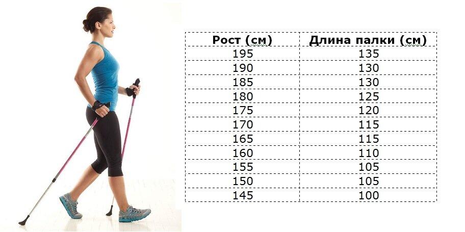 Палки для скандинавской ходьбы: как выбрать > женский блог