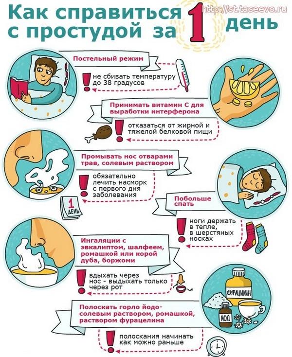Как быстро вылечить простуду в домашних условиях – правила быстрого лечения гриппа и орви в сезон простуд 2018 года