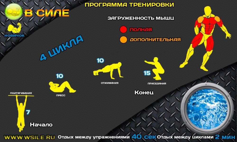 Упражнения в тренажерном зале для новичков - программа тренировок