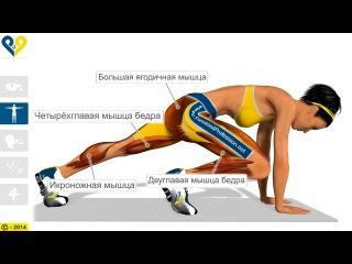 Альпинист упражнение какие мышцы