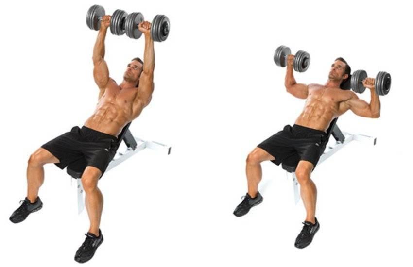 Жим гантелей сидя. крутое упражнение для роста ваших плеч!