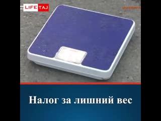Налог на лишний вес человека в россии – что известно о нем на данный момент, планируется ли его вводить?