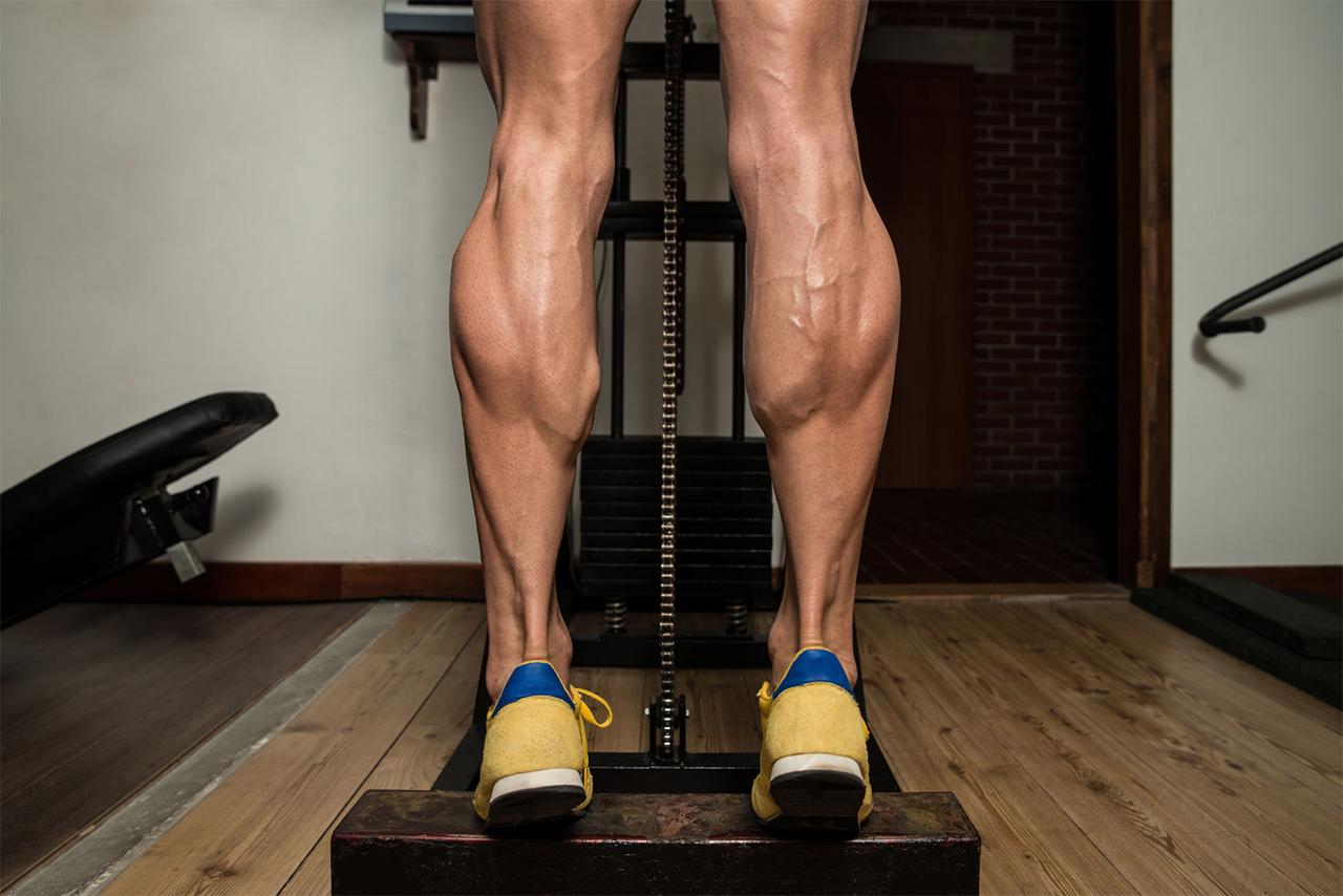 Упражнения: нюансы прокачки икр (икроножные мышцы) – все боевые искусства и единоборства