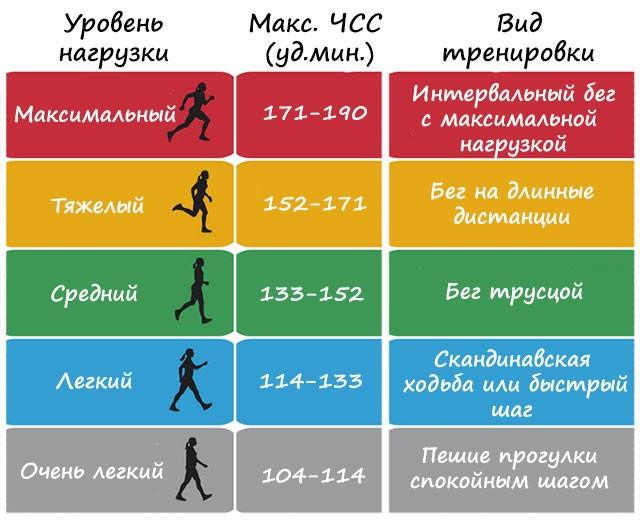 Пульс при беге: какой в норме у женщин, мужчин, детей, марафонца, что такое пульсовые зоны, бег на низком пульсе