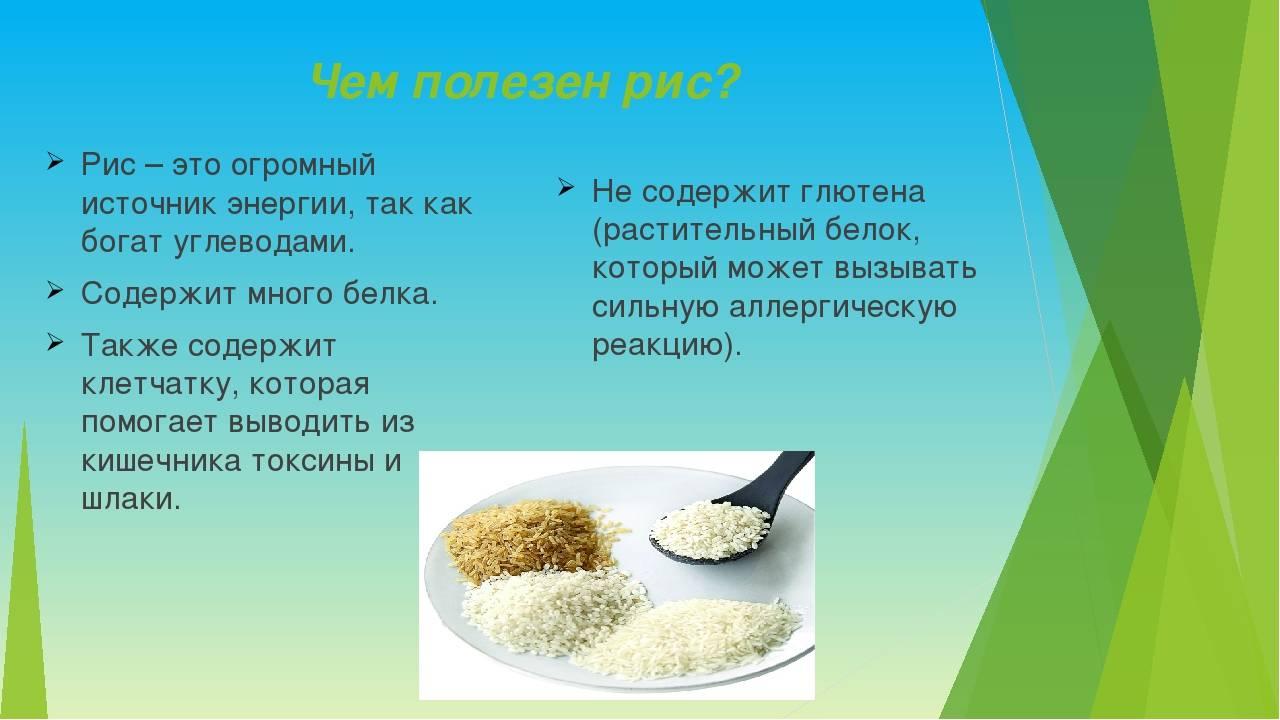 Сколько калорий в рисе на 100 грамм: польза и вред при похудении, содержание белков, жиров и углеводов
