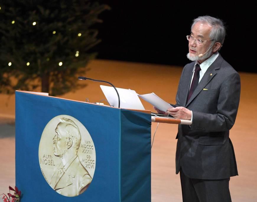 Секрет однодневного голодания, за который дали нобелевскую премию :: инфониак