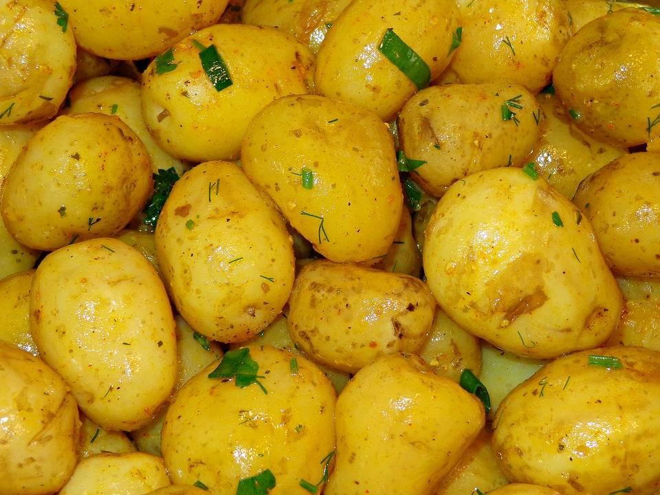 Чем полезен картофель для здоровья человека, вред картофеля – сад и огород своими руками