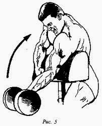 Сгибание рук на скамье скотта