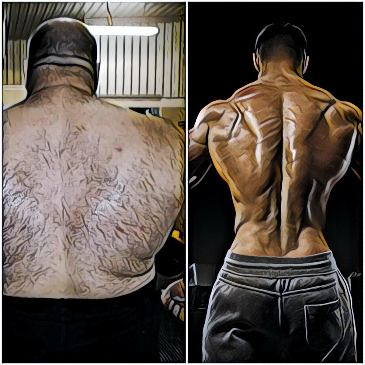 1 кг мышц - 1 жира: как выглядит, описание с фото, разница в объемах, как заменить жир на мышцы - tony.ru
