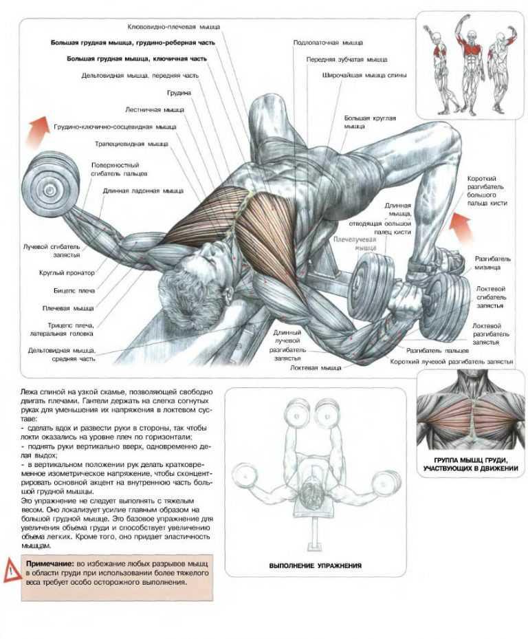 Как убрать жир с грудных мышц: упражнения, правильное питание