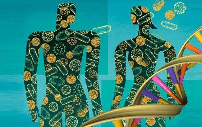 Микромир внутри нас. знакомьтесь, микробиом человека!