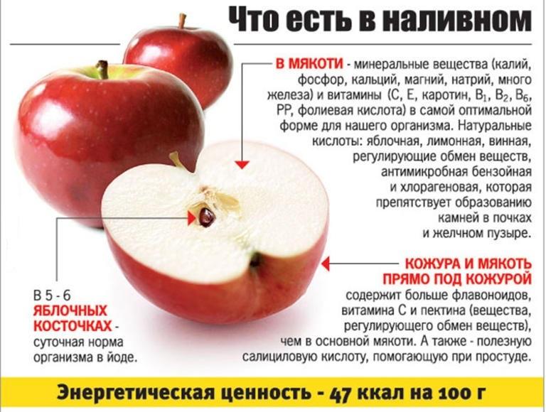 Калорийность яблок — бжу и суточная норма