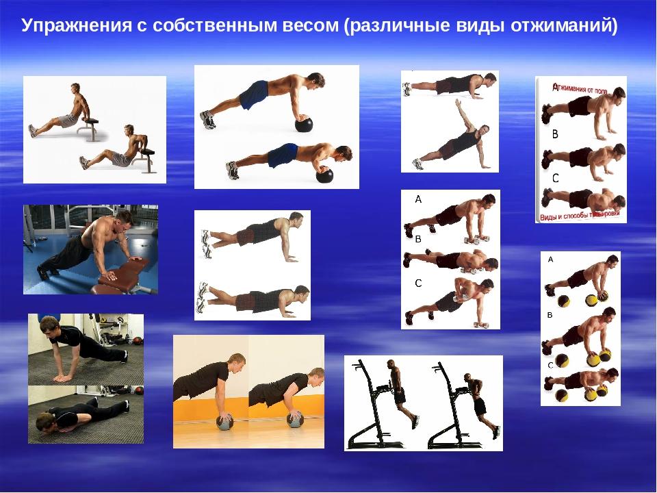 Программа тренировок с собственным весом для мужчин