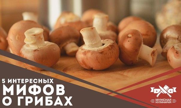 Сколько перевариваются грибы в организме человека? - умный врач