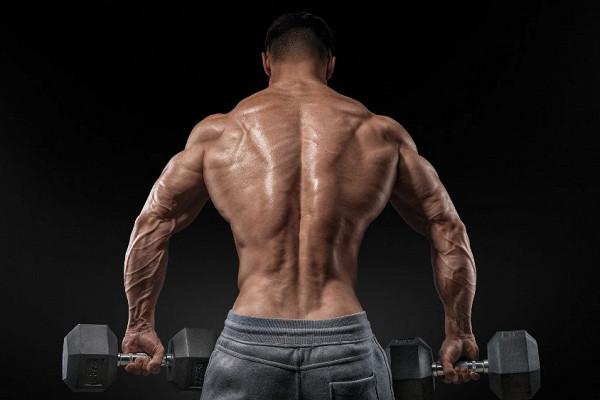 Комплекс упражнений на спину с гантелями для мужчин в домашних условиях
