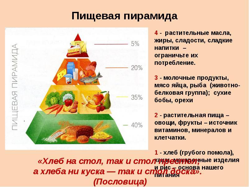 Пирамида здорового питания (пищевая пирамида) все от а до я! в домашних условиях   для девушек и мужчин