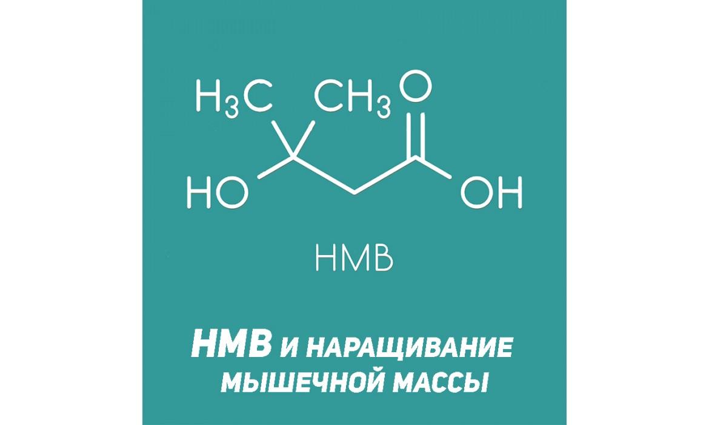 HMB: гидроксиметилбутират в спортивном питании