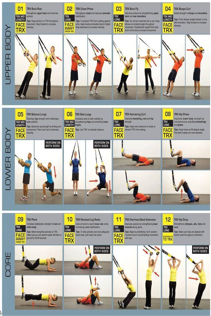 Тренировки trx для женщин: программа для похудения, новичков, круговая, на массу, силу и выносливость