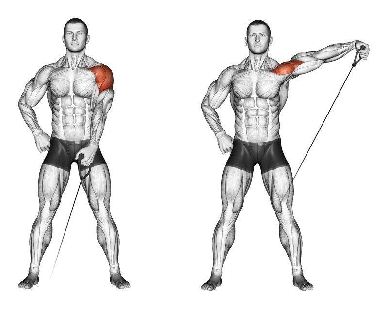 Упражнение кроссовер - проработка для грудных мышц