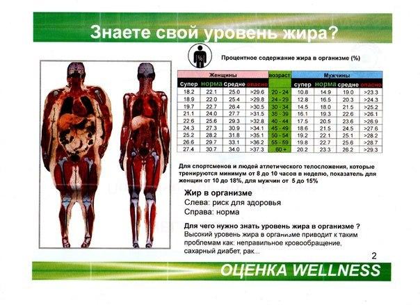 Процент жира в организме: норма для мужчин
