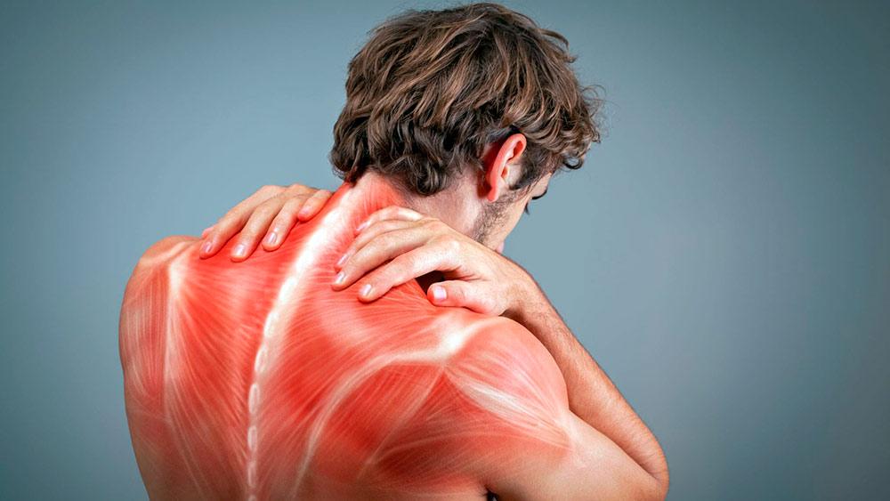 Упражнения для расслабления мышц спины: виды, комплексы