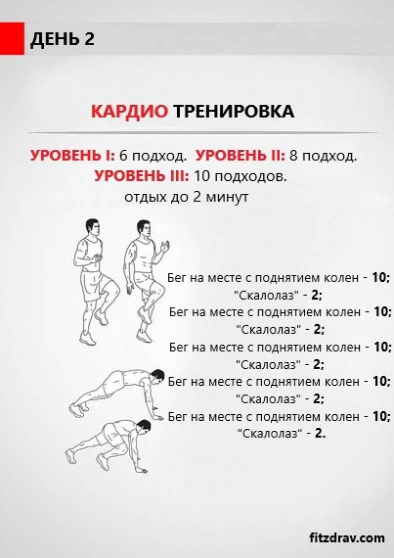 Как грамотно составить программу тренировок