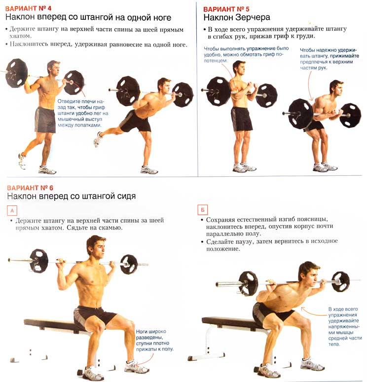 Наклоны со штангой на плечах или гуд монинг – техника, какие мышцы работают