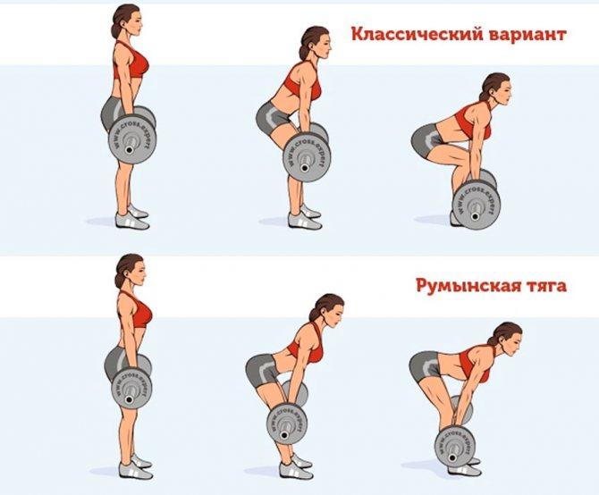 Румынская тяга— правильная техника выполнения со штангой! эффект упражнения, отличия от других видов становой