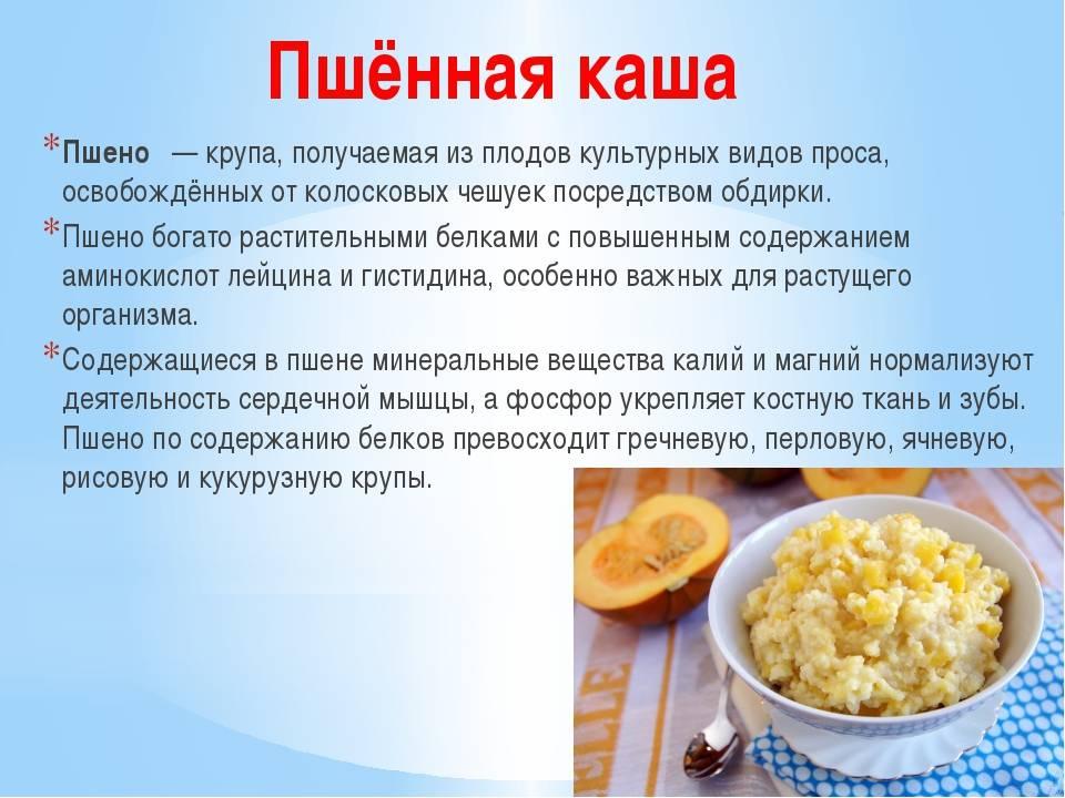 Польза и вред супов