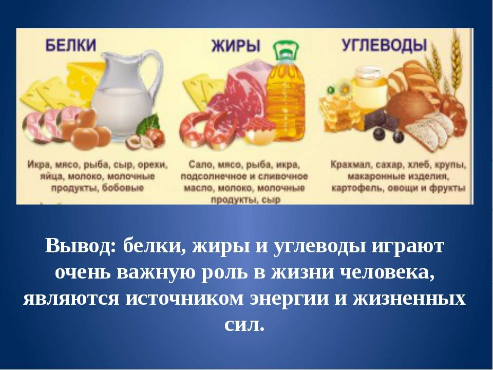 Белки, жиры, углеводы - источники энергии для организма человека