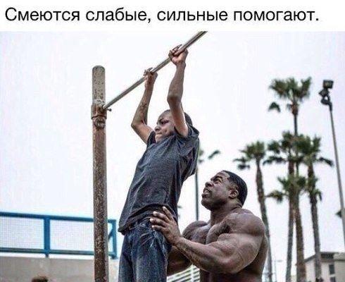 Никогда не помогай слабым! — андрей жельветро