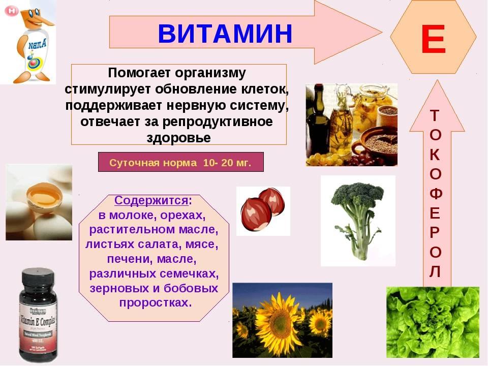 Витамин в1 (тиамин) – свойства, роль и баланс в организме