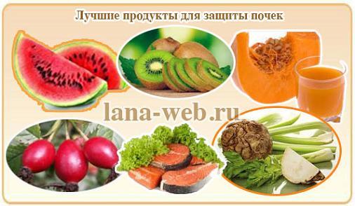 Полезные и вредные продукты для почек: список и описание | польза и вред