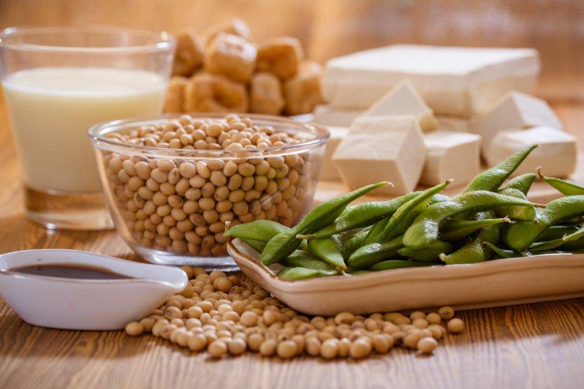 Соя польза и вред для здоровья: состав, свойства, противопоказания