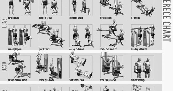 Как самому составить персональную программу тренировок – зожник  как самому составить персональную программу тренировок – зожник