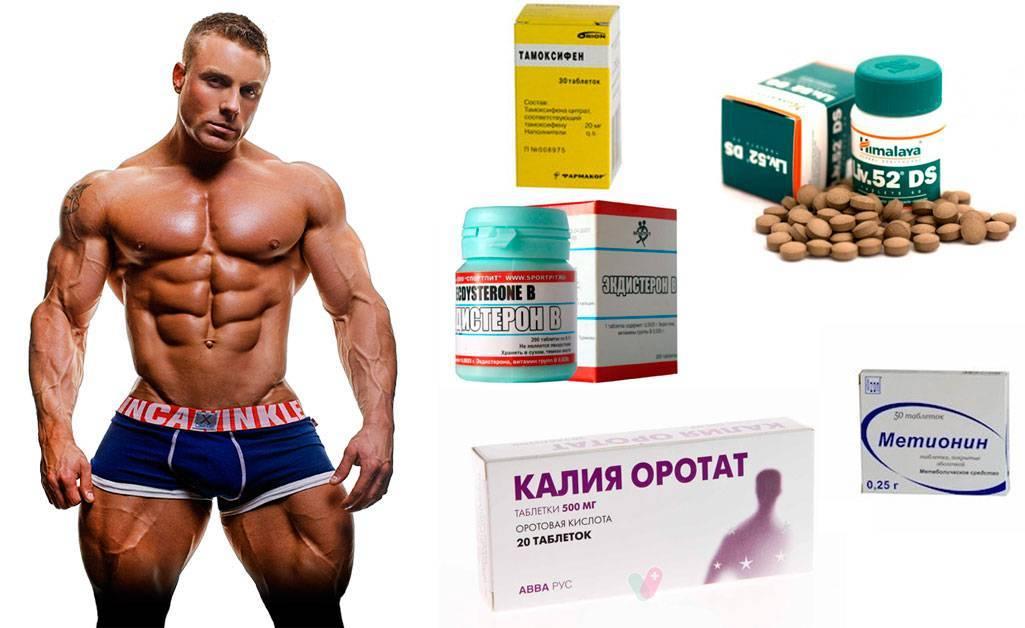 Аптечные препараты для бодибилдинга: на рост мышечной массы и на сушку