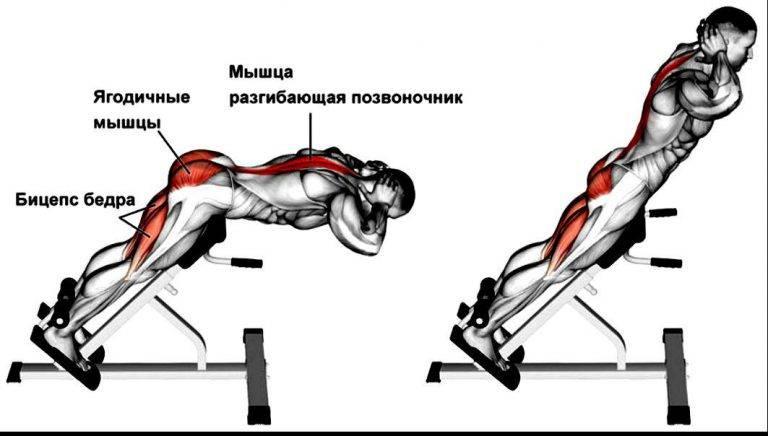 Как правильно делать гиперэкстензию для спины