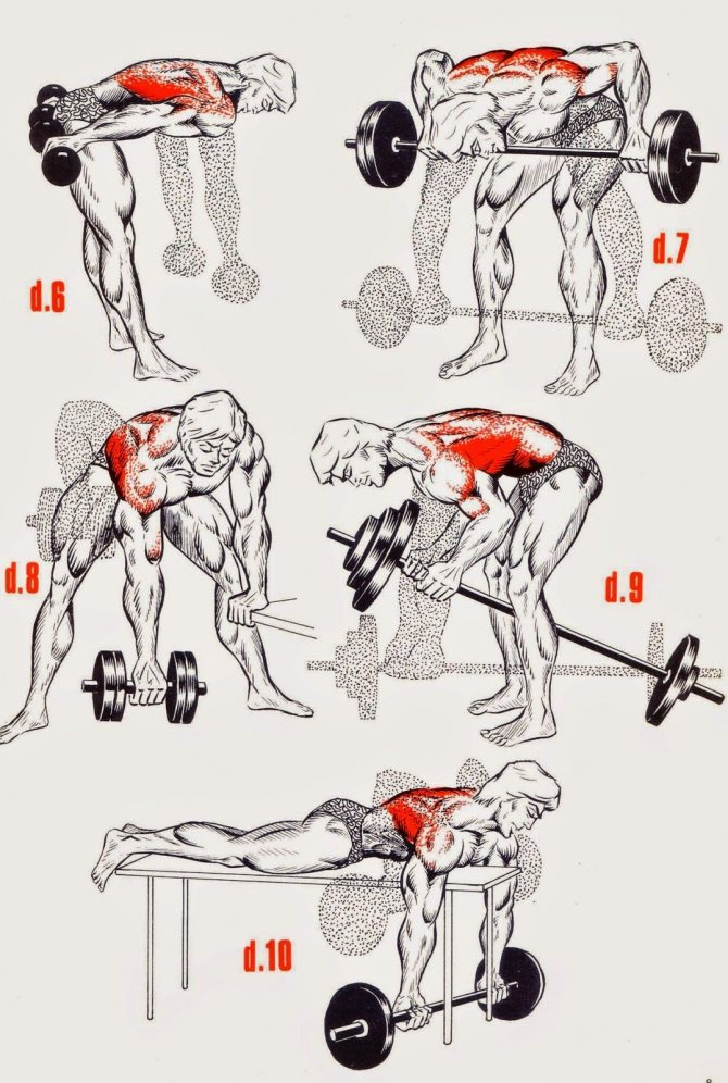 Как накачать спину в домашних условиях : практический курс для девушек | rulebody.ru — правила тела